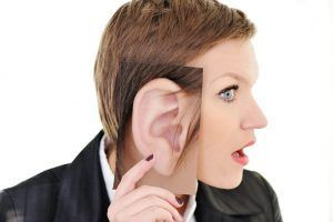 Protuding ears (large)